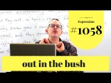 Learn English Daily Easy English 1058 out in the bush