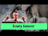 Learn English Daily Easy English 1069 ivory tower
