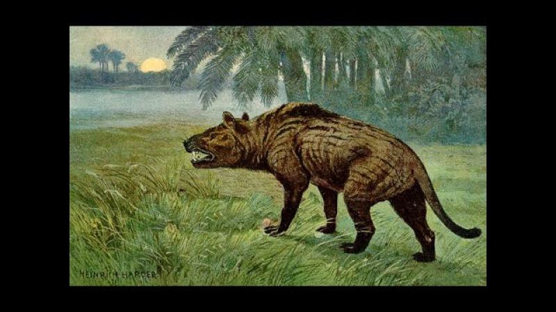 Доисторические хищники — Челюсти как бритва (Документальные фильмы National Geographic HD)