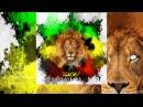 ANAGLIF - Zion (Savnalld Remix)