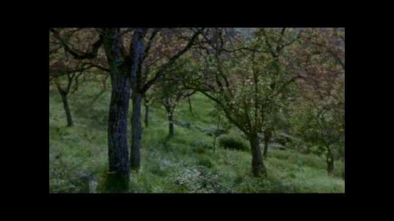*The Music of the Earth* - Roberto Cacciapaglia Oceano -