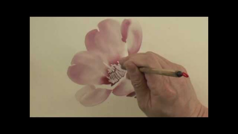 Chinese Painting Lesson Camellia 7
