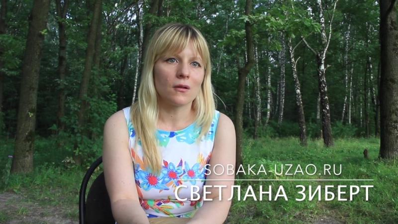 Свелана Зиберт, о принятии закона защиты животных