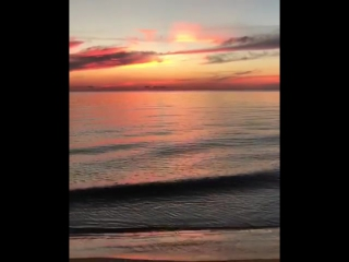 Наверное, это мой Рай!!! 🙌❤️☺️ #Фукуок #Phuquoc Ещё один тёплый привет от нашего @heypetu 😸🎥 @coraltravel @coralelite @epizode_o