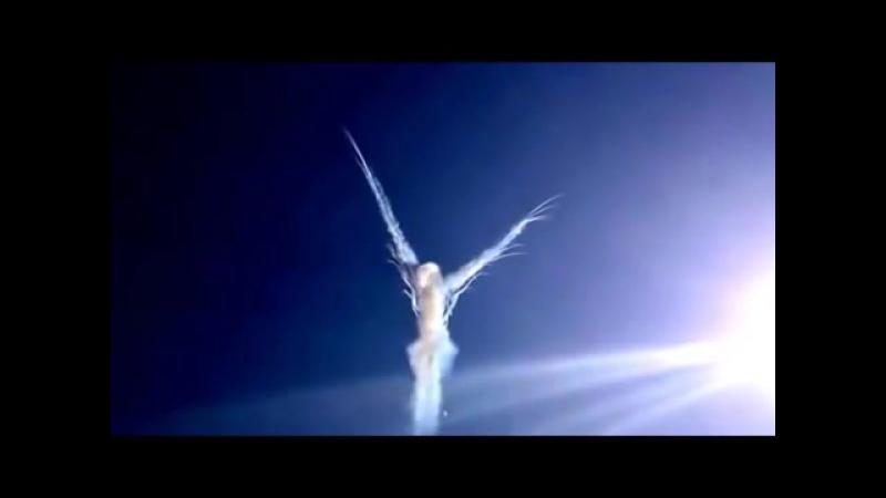 Русские Витязи роспуск Ангел