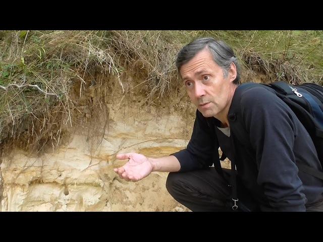 Малый Люберецкий песчаный карьер. Золотарев А.Ю.