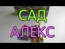 Сад Алекс Майнкрафт Лего Набор на Обзор Alex Garden Minecraft