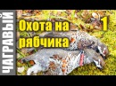 Секреты охоты на рябчика 1 Secrets of hunting grouse from Russia 1