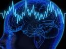 Хорошая память и работа мозга у детей и взрослых. Что разрушает мозг