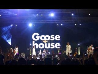 Goose house-fly high so high