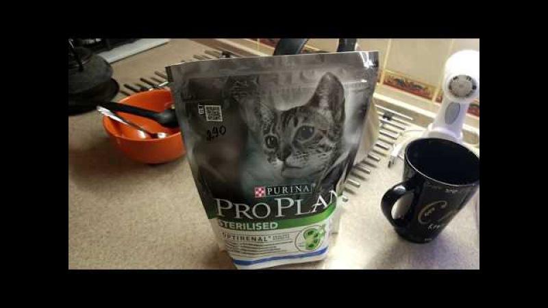 Влог VLOG Кузю кастрировали Pro Plan для кошек Показываю район Обрызгала кровью
