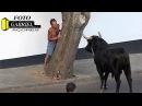 DVD, Nº20 Iª Parte MARRADAS ILHA TERCEIRA AÇORES