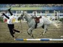 Самые ЖЕСТКИЕ и ОПАСНЫЕ падения с лошади ТОП 20 the best falls from a horse