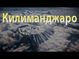 Поездка в Танзанию. Восхождение на Килиманджаро по маршруту Лемошо.