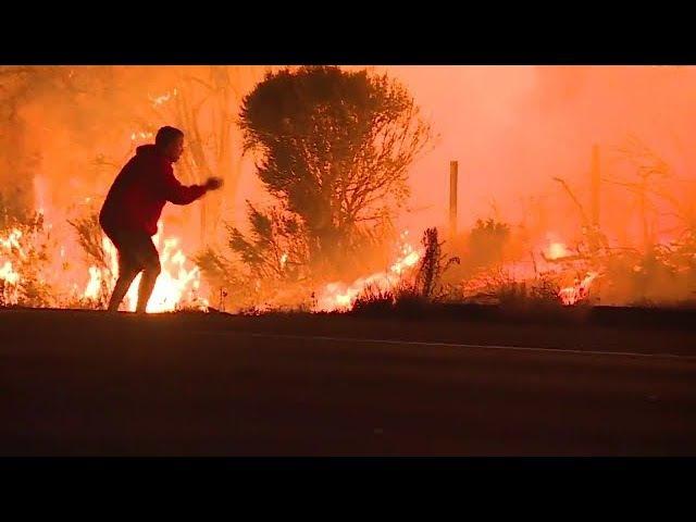 Мужчина спас кролика от пожара рядом с городом Вентура (Калифорнии, 06.12.2017)