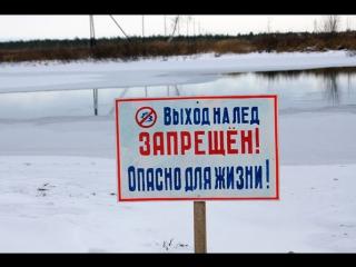 Житель Симферополя спас провалившуюся под лёд собаку. Крым. Симферополь