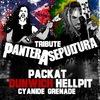 22.9 Sepultura & Pantera Tribute // СВОБОДА конц