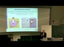 Liver Fibrosis Basic Mechanisms Clinical Targets