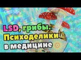 LSD, псилоцибин. Зачем изучают психоделики в медицине Галлюциногены, Стимуляторы...
