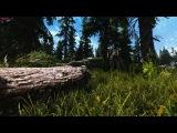 Ultra Realistic Graphics, enjoy virtual nature