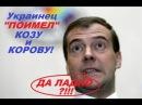 УКРАИНЕЦ-ЗООФИЛ ПОИМЕЛ козу и корову!