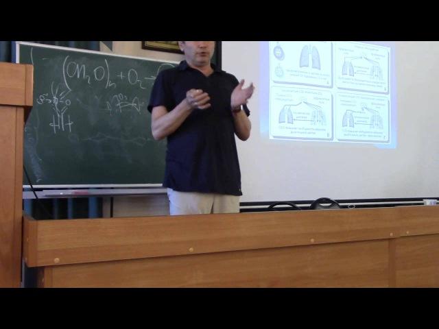 Минвалеев Р. С. Физиология медитации. Ч. 1. Семинар ЦИЭМ 10.06.15.