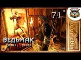 Прохождение Ведьмак 3 Дикая Охота (The Witcher 3 Wild Hunt) #71 ШАЛФЕЙ РОЗМАРИН И БЛУДНИЦЫ
