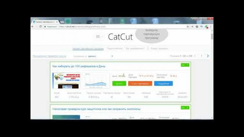 Как заработать 1000 рублей в день на продажах с CatCut - 2017