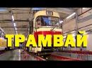Галилео. Трамвай 🚋 Tram