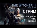 The Witcher 3 Wild Hunt Ведьмак 3 Дикая охота Прохождение со всеми ДЛС 1
