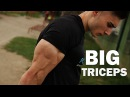 DO this for big TRICEPS!!  - Top 4 Exercises | Danijel Švec - Street Brothers