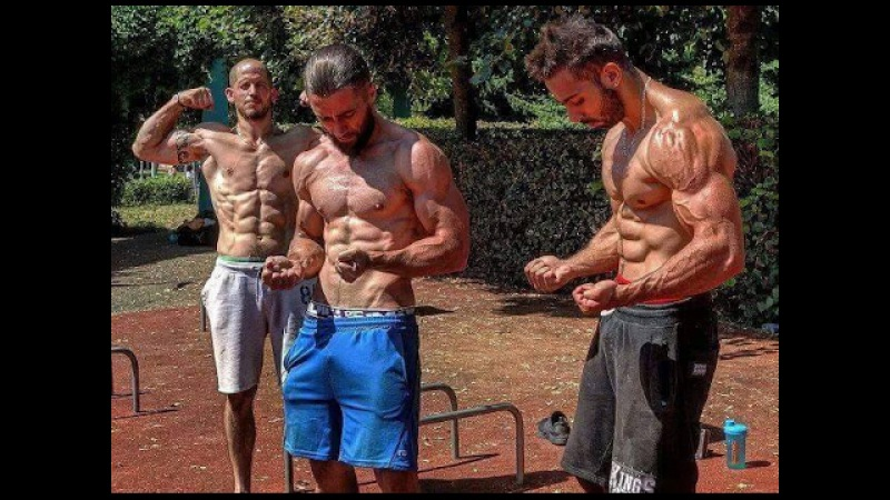 This Is Street Workout 2017 P1