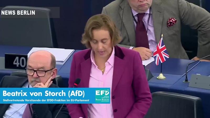 Rede von Beatrix von Storch (AfD) vor dem EU Parlament Reden sie weiter über Breitbandausbau