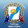 Федерация по хоккею с шайбой г. Ивантеевка