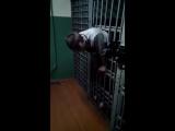 Пацан застрял в клетке.