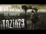 Лампо - бородатый стрим |STALKE​R.: Call of Pripyat