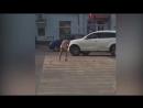 русское швайнэ срет на дороге.
