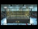 CZW Cage Of Death XVI (13.12.2014)