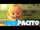 Despacito - Luis Fonsi and Daddy Yankee   Animated   Dancing baby   Minions   The Boss Baby  