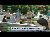 Расплескалась синева: корреспондента НТВ избили во время прямого эфира празднования дня ВДВ