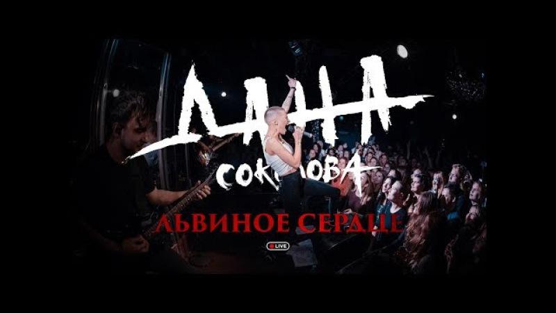 Дана Соколова - Львиное Сердце (live)