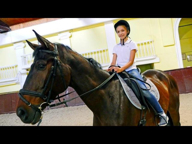 Развлечения для детей подружка Света в конном клубе