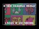 Различия LSD25 и 25i-nbome   Neuro Soup на русском от Shintarou 18