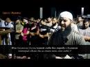 Cура 27 Муравьи аяты 59 66 Шикарное чтение Корана