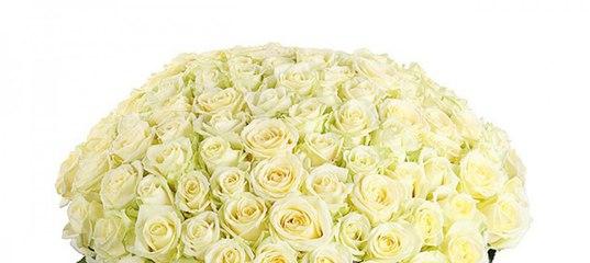 Доставка цветов ростов-на-дону клевер семена комнатные цветы купить