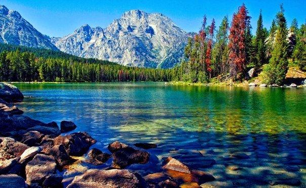 Каждый хочет жить на вершине горы, но всё счастье, всё развитие происходит, пока ты туда взбираешься.