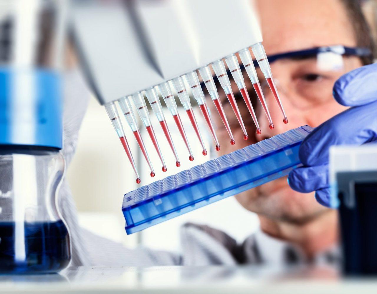 ПЦР и ИФА исследования при анализах крови на туберкулез