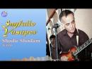 Sayfullo Yusupov - Shodu Shodam (Cover by Googoosh) AUDIO @ Сайфулло Юсупов - Шоду Шодам