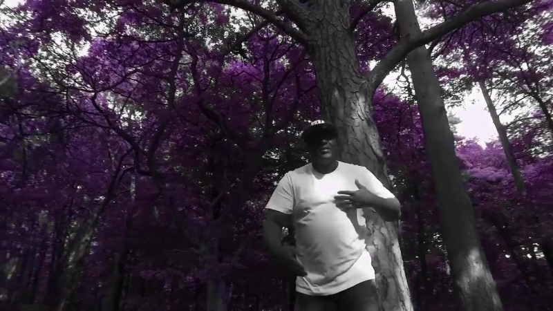 Submorphics feat. Satl T.R.A.C - Whatchudo