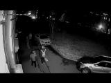 Нападение вандалов 18.11.2017. 2
